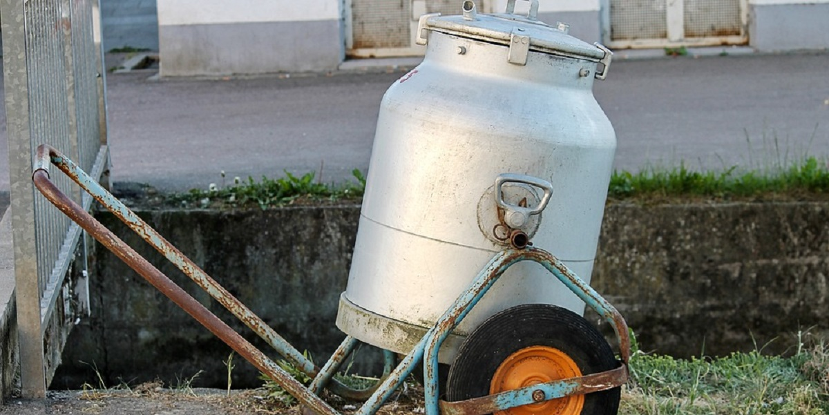 Алтай, ФАС, молоко, цены