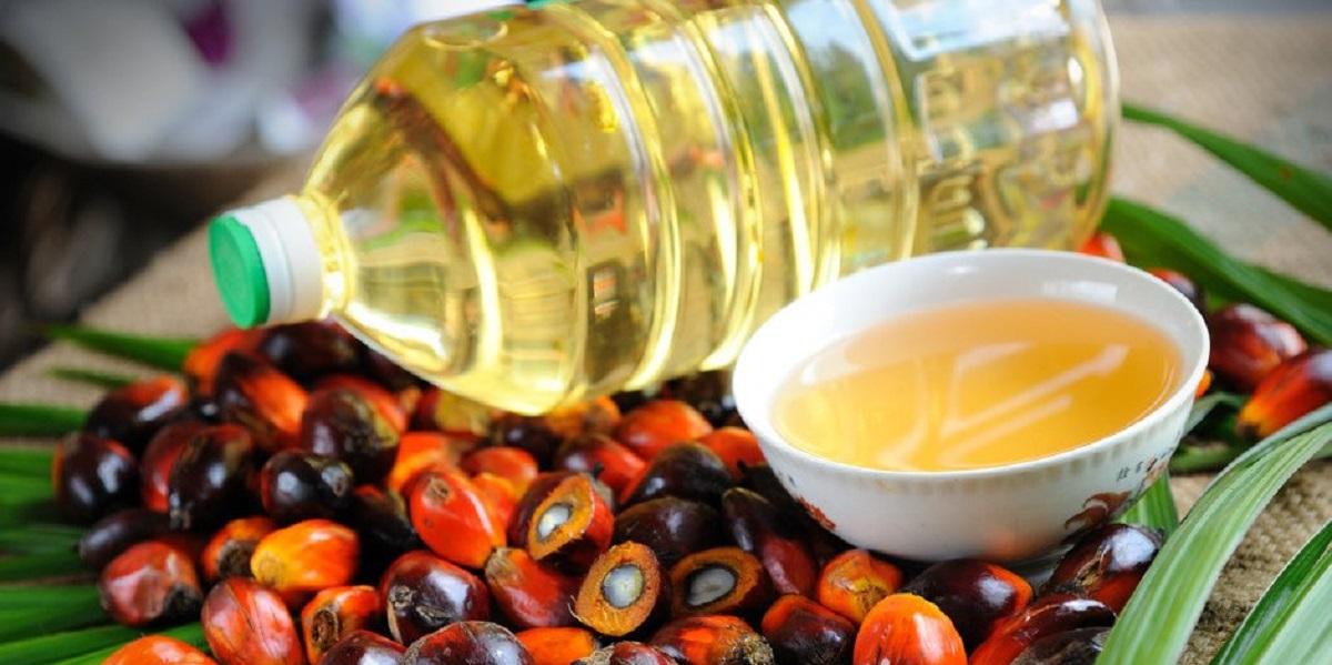 Госдума, пальмовое масло, ограничение импорта, Вячеслав Володин